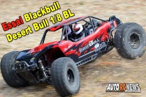 [Essai] Blackbull Desert Bull 1/8 Brushless RTR
