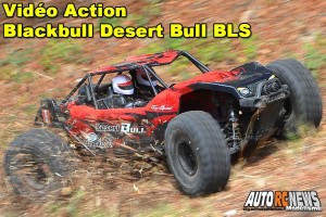 . [Video] Blackbull Desert Bull 1/8 Brushless RTR