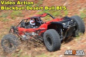 [Video] Blackbull Desert Bull 1/8 Brushless RTR