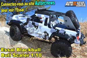 [Essai] Blackbull Bull Scaler 1/10 RTR