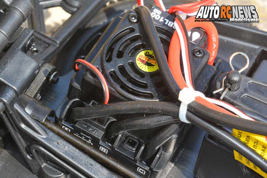 essai buggy blackbull bull sport 1/8 ep brushless rtr 4wd réf : 220094995 by avio et tiger